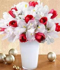 proflowers iris
