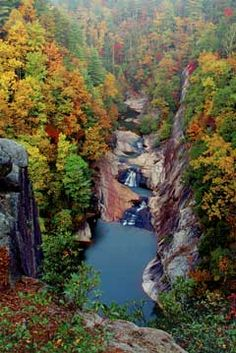 Tallulah Gorge | Brown's Guide to Georgia. We've stopped once on our way back from the Smokies, & it is gorgeous.