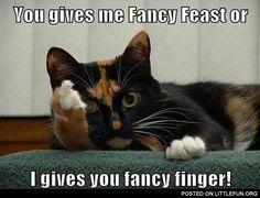 You gives me fancy feast or I gives you fancy finger
