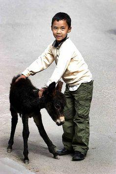 Ladakh (India). Courtesy: Steve Evans, citizen of the World.