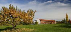 Der Steirerhof Bad Waltersdorf | Thermen- & Wellnesshotel Österreich/Steiermark (via @Der Steirerhof) - www.dersteirerhof.at Bad, Cabin, House Styles, Home Decor, Homemade Home Decor, Interior Design, Cottage, Home Interiors, Wooden Houses