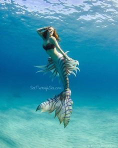 My Mermaid Obsession. Are you really a mermaid? Fantasy Mermaids, Real Mermaids, Mermaids And Mermen, Fantasy Creatures, Mythical Creatures, Sea Creatures, Mermaid Cove, Mermaid Fairy, Mermaid Artwork