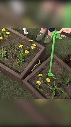 Kalanchoe Flowers, Pallets Garden, Useful Life Hacks, Garden Care, Lawn Care, Front Yard Landscaping, Water Garden, Flower Beds, Natural Living