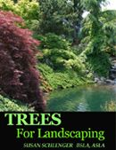 Different types of privacy plants can be used when you want screening for your property. Depending on what you want to block out, you can use evergreen trees or even evergreen shrubs. Types Of Evergreen Trees, Evergreen Shrubs, Backyard Trees, Indoor Trees, Landscaping Plants, Front Yard Landscaping, Landscaping Ideas, Farmhouse Landscaping, Driveway Landscaping