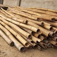 Bamboo is only suitable for long-term use when it has been properly dried. The high water content of bamboo allows it to rot, host fungi and be eaten by insects if it is not. Bamboo Garden, Bamboo Fence, Bamboo Roof, Bamboo Light, Bamboo Board, Sisal, Growing Bamboo, Bamboo House Design, Bamboo Building