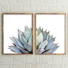 Grijze Cactus-Set van 2 Prints #152b die afdrukbare Art aangeboden in de maten hieronder. Dit is een INSTANT DOWNLOAD van een set van 2 bijpassende afdrukken van een opvallend mooie stekelige Agave Cactus met zachte pastels en diepe paarse tips die ik gefotografeerd in een tuin,