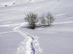mountaineering. #winter sports. Oasi Zegna, Italy. www.oasizegna.com
