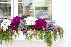 Fall window boxes, mums, cabbages and faux berries