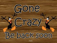 gone crazy funny quotes