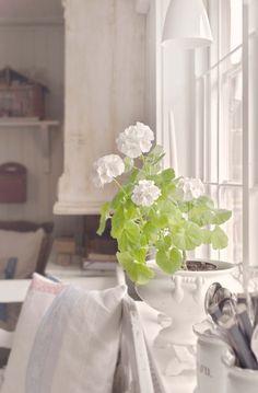 Ett utmärkande drag för shabby chic som inredningsstil ärfärgen vitt i olika nyanser, på allt från väggar, golv och tak till möbler. På 1600-talsgården Kulla viskar historien i varenda vrå, och gården är varsamt renoverad i traditionellt romantisk shabby chic-stil. Scandinavian Cottage, Scandinavian Design, Slim Aarons, White Rooms, Beautiful Kitchens, Cottage Style, Red And Pink, Shabby Chic, Indoor Plants