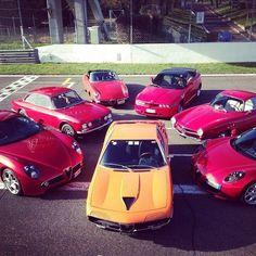 Alfa Romeo Montreal & Friends