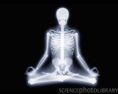 Yoga position, X-ray artwork