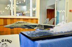 F-14 Tomcat model