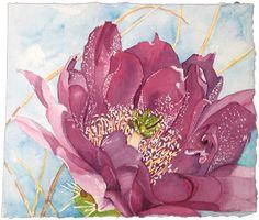 Cactus Flower, Hedgehog, Green Purple, Blue,WATERCOLOR PAINTING,  desert cactus card
