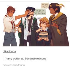 Voltron and Harry Potter