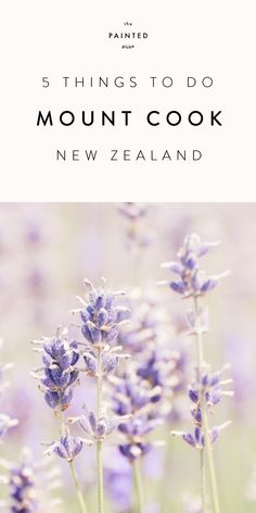 25 Ideas Travel Destinations Australia New Zealand Things To Packing List For Travel, New Travel, Summer Travel, Travel Usa, Globe Travel, Travel Guide, Mount Cook New Zealand, New Zealand South Island, Travel Humor