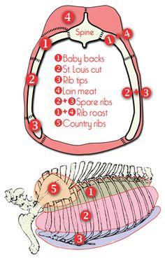 different rib cuts