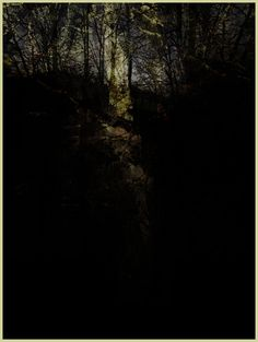 """iPhoneography """"Out of the Woods"""" Armin Mersmann"""
