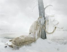 Simen Johan | Christophe Guye Galerie