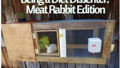 Being a Diet Dissenter- Meat Rabbit Edition