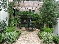 Image result for courtyard gardens with pergola