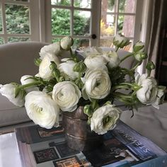 The prettiest white ranuculus on this dreary Seattle morning.