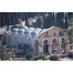 Church of All Nations / Garden of Gethsemane