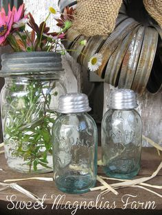 Canning Mason Jar Salt and Pepper Set  by SweetMagnoliasFarm