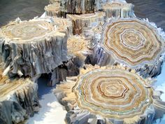 """magnolius: """"Illegal Logging"""" installation made out of recycled paper by Julie Dodd"""