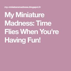 My Miniature Madness: Time Flies When You're Having Fun!