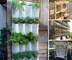 If you love to garden but your yard is small, a vertical garden is a smart way to maximize space.Here are ten vertical planting techniques to inspire you.