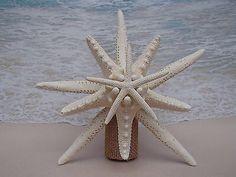 Starfish Christmas Tree Topper