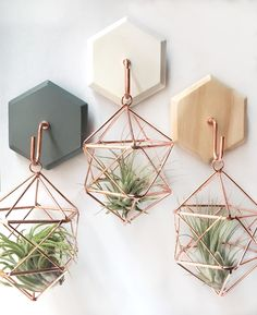 Geometric air plant hangers with hooks.