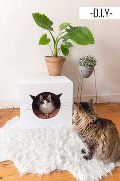 DIY maison chat à fabriquer   Une hirondelle dans les tiroirs