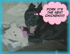Pork the next chicken