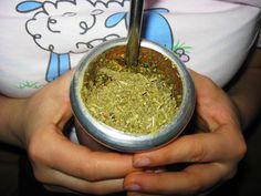 Kolory Herbaty: Jak wybrać yerba mate dla siebie? Może tutaj znajdziesz odpowiedź