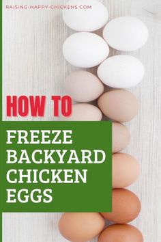 Do you know how to freeze fresh backyard chicken eggs? Did you even know eggs can be frozen? t sounds a bit weird, but frozen eggs can be kept for up to one year in your freezer, then defrosted and used in just about any recipe you can think of. There's only one caveat to this: don't use defrosted egg raw. Make sure the recipe you use frozen eggs for cooks them well. #raisinghappychickens #freezechickeneggs