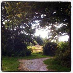 Path to gate in Steenwijk, Netherlands