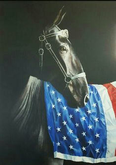 Horse and American Flag