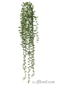 Artificial String of Pearl Succulent Hanging Vine in Green - 22 5 Long Fake Plants Decor, Plant Decor, Artificial Succulents, String Of Pearls, Decoration Inspiration, Plant Illustration, Hanging Planters, Hanging Gardens, Photoshop Elements