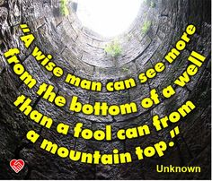 """""""A wise man can see more from the bottom of a well than a fool can from a mountain top."""" --Unknown"""