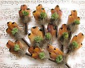 12 Nature-inspired wedding boutonnieres, dried plants, pheasant feathers, brown, green, rustic design, earthy, farm wedding boutineeres men