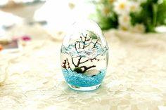 J Marimo Egg Jar Set