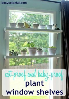 DIY Window Plant Shelves--cat and kid proof--step by step tutorial