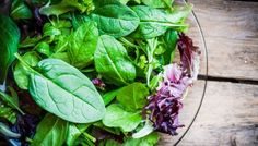 Freshh green salad with spinach,arugula,romane and lettuce Frischer grüner Salat mit Spinat, Rucola, Romane und Salat Best Fruit Salad, Fruit Salad Recipes, New Fruit, Growing Spinach, Growing Lettuce, Pearl Couscous Salad, Eat To Live Diet, Fava Beans, Cool Whip