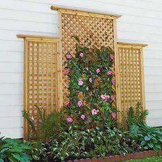 lattice projects | lattice trellis backyard project | Back and Front Garden Ideas