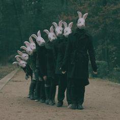 Surreal rabbit parade...