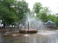 Make a wish on the turning flower fountain in the lower gardens at Peterhof Palace Russia