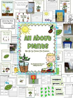 All About Plants! Hand on unit.