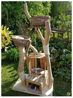 Special designs, your scratching post, also for big cats - natural wood trees . - Custom-made products, your cat tree, also for big cats – natural wood trees for cats - Big Cats, Crazy Cats, Grand Chat, Diy Cat Tree, Madeira Natural, Cat Enclosure, Cat Stands, Cat Playground, Cat Room